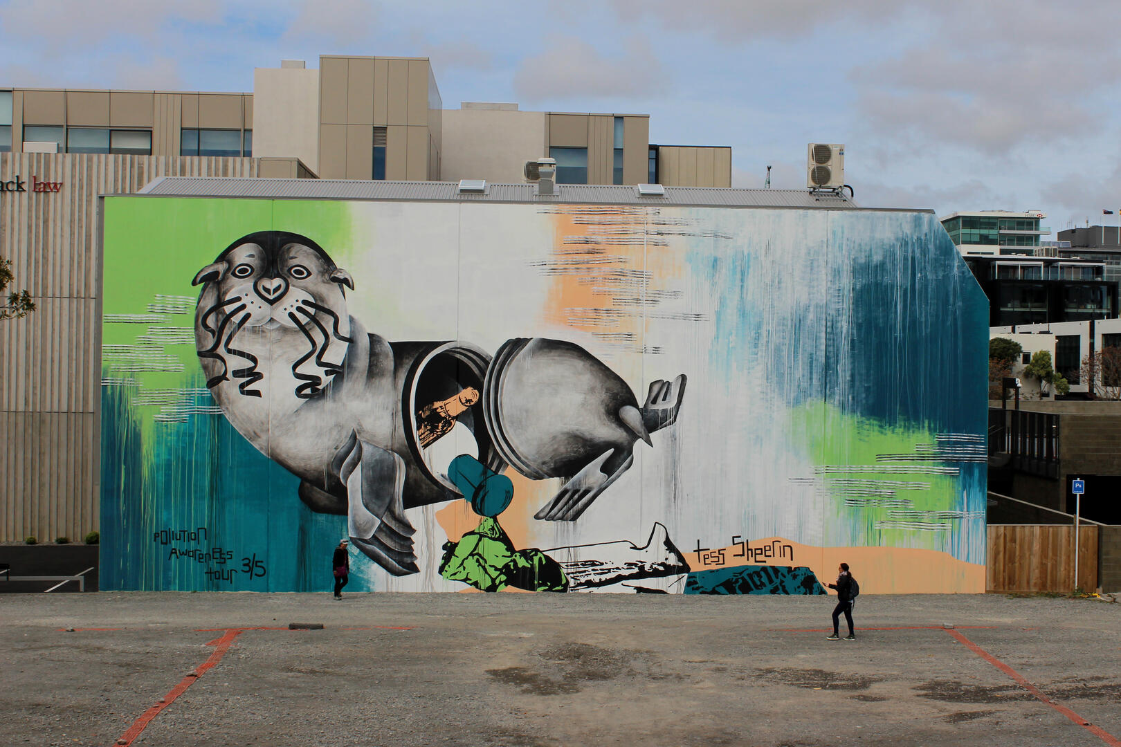 39 unsealed 39 mural third in five city nz pollution awareness for Mural go green