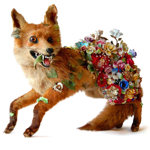 Angela Singer, Hedge Row, 2010, vintage taxidermy fox, found vintage jewels, glass and ceramic flowers. On loan from the Artist