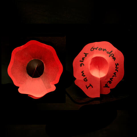 Paper poppy with message: over 500,000 have been left by visitors to the exhibition. Photo / Te Papa