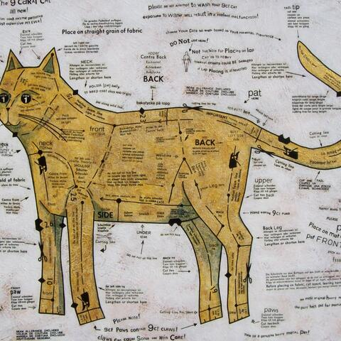 The Nine Carat Cat by Bonnie Coad.