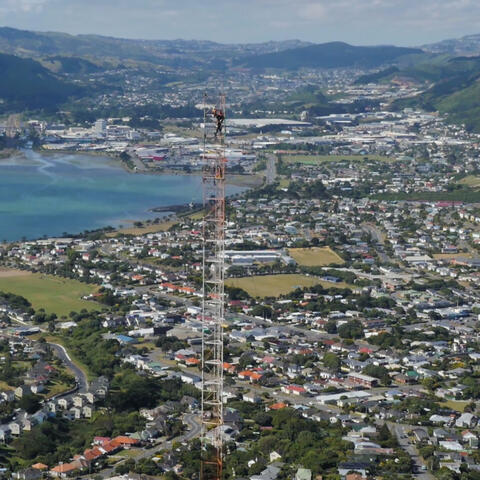 Coming Down Titahi Bay Tower 1936 - 2016