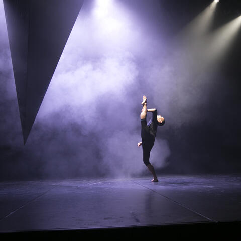 NZ Dance Company - photo by Caroline Bindon