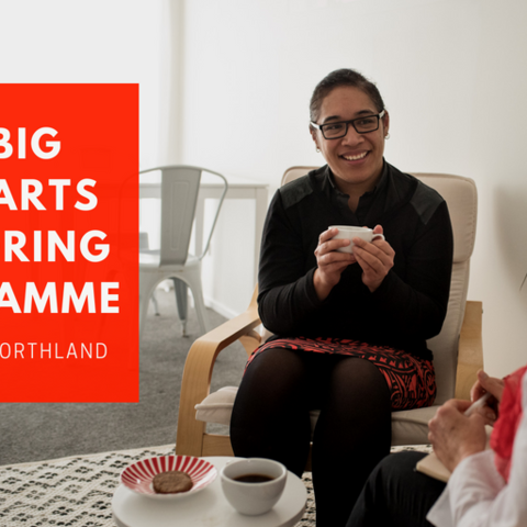 The Big Idea Mentoring Programme