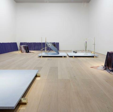 Exhibition view: Dane Mitchell, Iris, Iris, Iris, Mori Art Museum in Tokyo (18 November 2017–1 April 2018). Courtesy the artist and Mossman, Wellington.