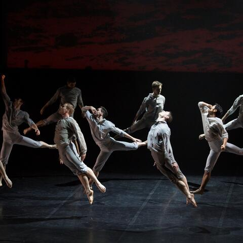 RNZB Dancers in Passchendaele by Neil Ieremia. Image: Ellie Richards