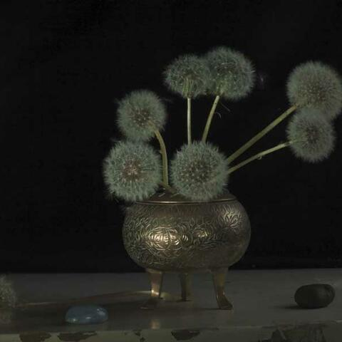 Still Life with Grandma's Incense Burner & Dandelion Clocks