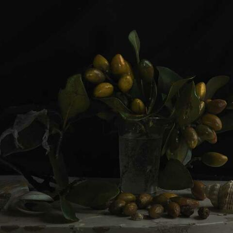 Still Life with Karaka Drupes & Gecko Skin