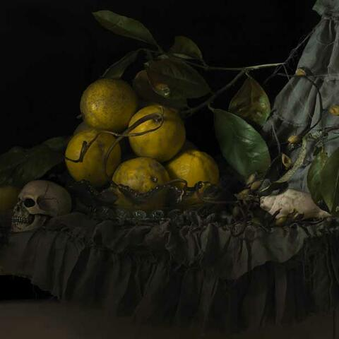 Still Life with Seaweed & Lemons