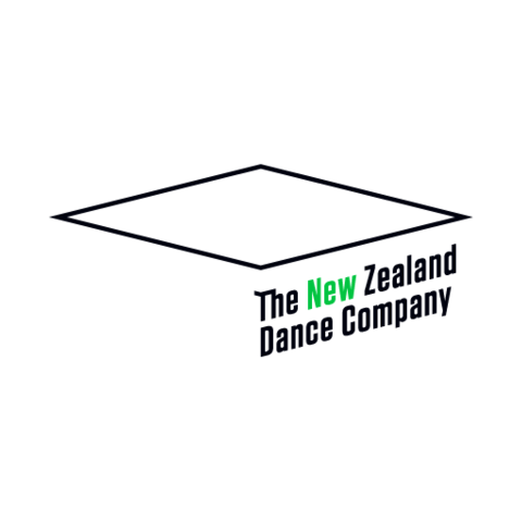 Dance Education Manager/Artist | Work | The Big Idea | Arts