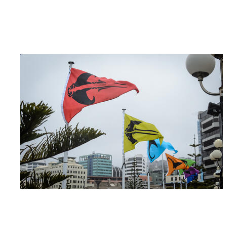 WAITUHI Matariki Public Art - call for proposals | Work