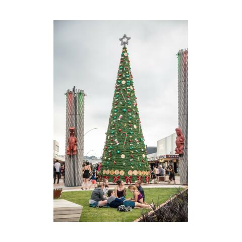 The Rotorua Lakes Council (RLC) is seeking proposals from the creative sector for the decoration of Rotorua's city Christmas tree