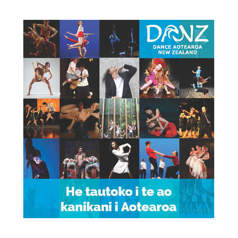 Dance Aotearoa New Zealand, Supporting dance in Aotearoa
